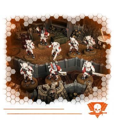 Warhammer Kill Team: Equipo Pulsoestelar (Caja de Inicio T'au Empire)