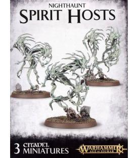 Warhammer Age of Sigmar: Nighthaunt (Spirit Hosts)