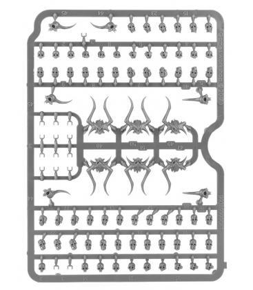 Warhammer Age of Sigmar: Citadel Skulls